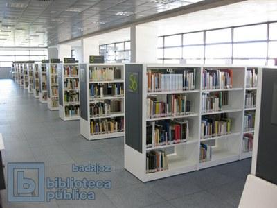 Resistiendo a la crisis: apertura de nuevas bibliotecas en España